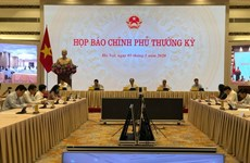 Vietnam prioritises developing domestic market