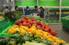 Fruit, vegetable exports up 7.9 percent in April