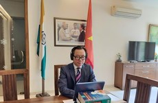 Vietnam shares post-pandemic development policies