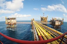 PetroVietnam's crude oil output in Jan-April exceeds set target