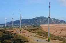 Investors still concerned about wind power development