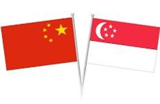 Singapore, China enhance cooperation in CCI framework