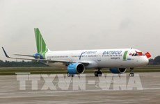 Bamboo Airways permitted to operate direct flights to Japan