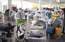 Over 340 Vietnamese citizens brought home from Russia