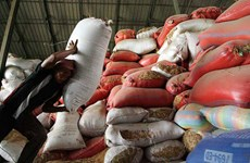 Cambodia works to enhance competitiveness of rice export