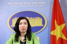 Vietnam condemns cyberattacks in all forms: Foreign Ministry spokeswoman