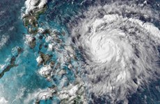 Typhoon Vongfong makes landfall in Philippines