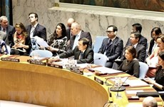 Vietnam supports reform of UNSC working methods