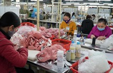 Vietnamese, US footwear firms to discuss trade amid pandemic