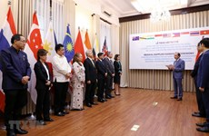 Vietnam presents medical supplies to eight countries