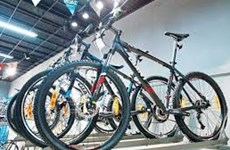 Cambodia's bicycle export surges despite pandemic