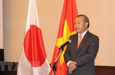 Vietnam, Japan coordinate closely to fight COVID-19: Ambassador
