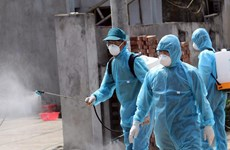 Vietnam records no new COVID-19 infections in community for 41 days