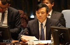 Vietnam prioritises protecting civilians in armed conflicts: Ambassador