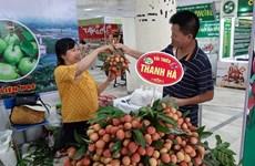 Thanh Ha lychee fair opens in Hanoi
