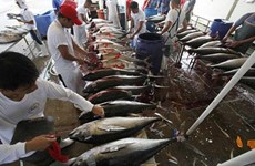 Philippines seeks World Bank's loan to boost fisheries sector