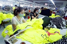 Vietnam enhances trade remedy capacity in anticipation of EVFTA