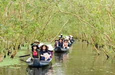 Mekong Delta's tourism firms going all out to attract more visitors