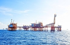 PetroVietnam's oil equivalent output totals 8.99 million tonnes in five months
