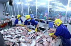 Seafood sector urged to diversify products