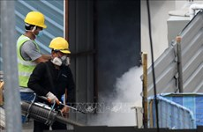 Singapore faces strong dengue fever outbreak