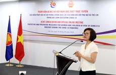 ASEAN discusses occurrence of domestic violence during pandemic