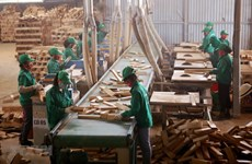 HCM City's industrial production rebounds in May