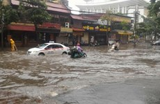 WB approves credit to support Vietnam's response to climate change