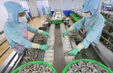 Ca Mau strives for 1.9 billion USD in export value in 2025