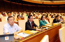 ILO lauds Vietnam's move to tackle forced labour