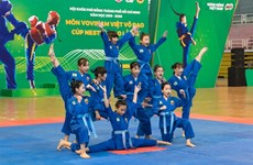 Student Vovinam tournament begins in HCM City