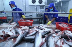Tra fish exports plummet 39 pct. in first five months