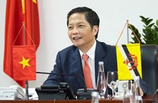 Vietnam, Brunei agree to strive for prompt opening of trade routes