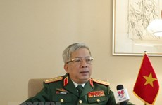 Vietnam, Japan hold deputy defence minister-level phone talks