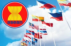 ASEAN, RoK officials discuss COVID-19 cooperation