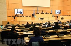 Vietnam attends UN Human Rights Council's 43rd session