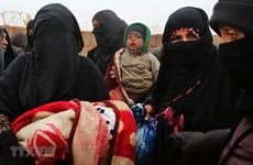 Vietnam calls for more humanitarian support for Syria