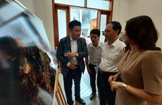 Ba Ria – Vung Tau to develop modern seaports, logistics services