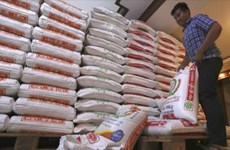 Cambodia predicted to export 800,000 tonnes of rice in 2020