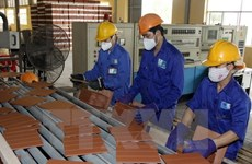 Development strategy for building material sector to be devised