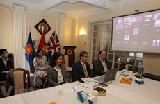 UK webinar on post-pandemic investment opportunities in Vietnam