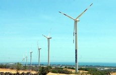 Vietnam's renewable energy sector faces obstacles