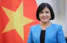 Vietnam attends GICHD's executive council meeting