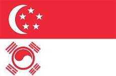 RoK, Singapore discuss defense strategy