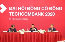 Techcombank targets 13 trillion VND pre-tax profit in 2020