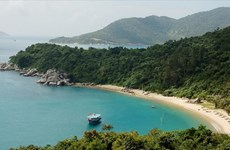 Project helps create sustainable ecological environment on Cu Lao Cham Island