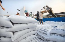 Rice export price lowest in two months