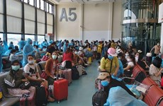 Over 340 Vietnamese citizens brought home from Taiwan