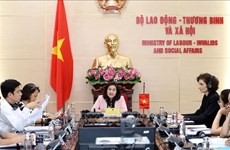 Vietnam, Switzerland discuss pushing labour collaboration after COVID-19