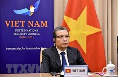 Vietnam backs Palestinians' fight for justice: Deputy FM